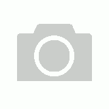 Bull-It 20 Ladies Fury II Black Skinny Jeggings (A) Short (14)